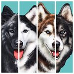 @fluffyhuskytales's profile picture on influence.co