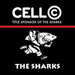 @sharksrugby's profile picture on influence.co