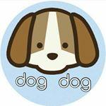 @storedogdog123's profile picture