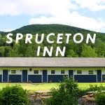 @sprucetoninn's profile picture