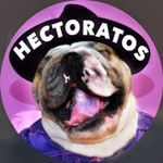 @hectoratos's profile picture on influence.co