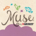 @musecatfood's profile picture
