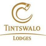 @tintswalo_lodges's profile picture