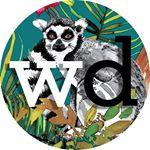 @wallpaperdirect's profile picture