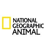 @natgeoanimal's profile picture on influence.co