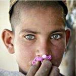 @everydaykandahar's profile picture on influence.co