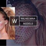 @wilhelminala's profile picture on influence.co