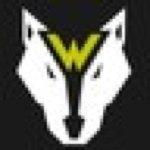 @wolversonfit's profile picture