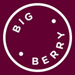 @bigberry.eu's profile picture on influence.co