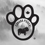 @canadapooch's profile picture