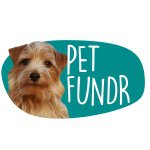 @petfundr's profile picture on influence.co
