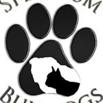 @spectrumbulldogs's profile picture on influence.co