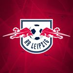 @dierotenbullen's profile picture on influence.co