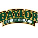 @baylorspiritsquad's profile picture