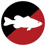 @tacklewarehouse's profile picture on influence.co