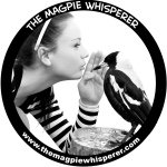 @themagpiewhisperer's profile picture on influence.co