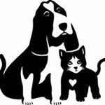 @whsanimals's profile picture on influence.co
