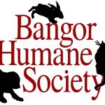 @bangorhumane's profile picture on influence.co