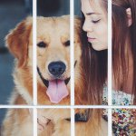 @burberrygoldenretriever's profile picture on influence.co