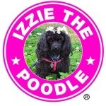 @izzie_poodle's profile picture on influence.co