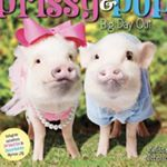 @prissy_pig's profile picture