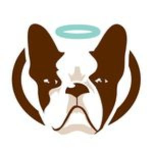 @naturaldogcompany's profile picture