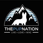 @thepupnation's profile picture on influence.co