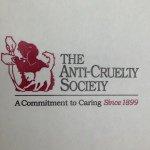 @anticruelty's profile picture