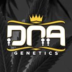 @dna_genetics's profile picture on influence.co