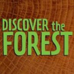 @discovertheforest's profile picture on influence.co