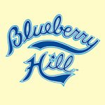 @blueberryhillstl's profile picture on influence.co