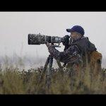 @photographybyhenrik's profile picture on influence.co