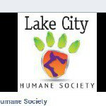 @lakecityhumanesociety's profile picture on influence.co