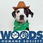 @woodshumanesociety's profile picture on influence.co