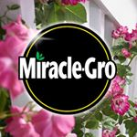 @miraclegro's profile picture