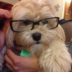 @grandmastersmoke's profile picture on influence.co