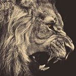 @regiphenom's profile picture on influence.co