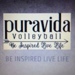 @puravidavolleyball's profile picture on influence.co
