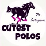 @cutest_polos's profile picture on influence.co