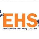 @etobicokehumanesociety's profile picture on influence.co