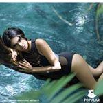 @putrizairahwijaya's profile picture on influence.co