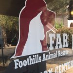 @foothillsanimalrescue's profile picture