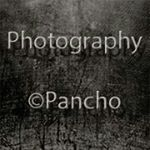 @photographypancho's profile picture on influence.co