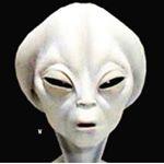 @officialhiimboo's profile picture