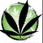 @queen_of_the_cannabis's profile picture on influence.co