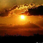 @abilio_nature_photo's profile picture on influence.co