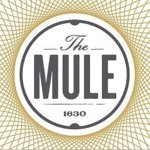 @themuleokc's profile picture on influence.co