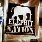 @elephit's profile picture on influence.co