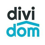 @dividom_com's profile picture on influence.co