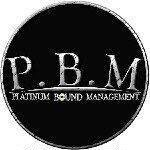 @platinumboundmgmt's profile picture on influence.co